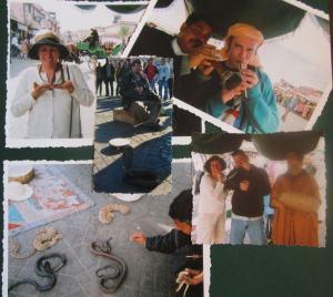 snake charmers marrakesh 2006-7